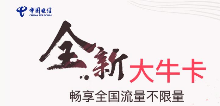 中国电信办流量牛卡所有活动集合
